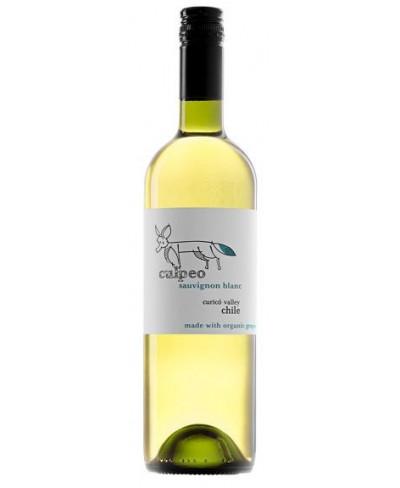 Culpeo Sauvignon Blanc 2012